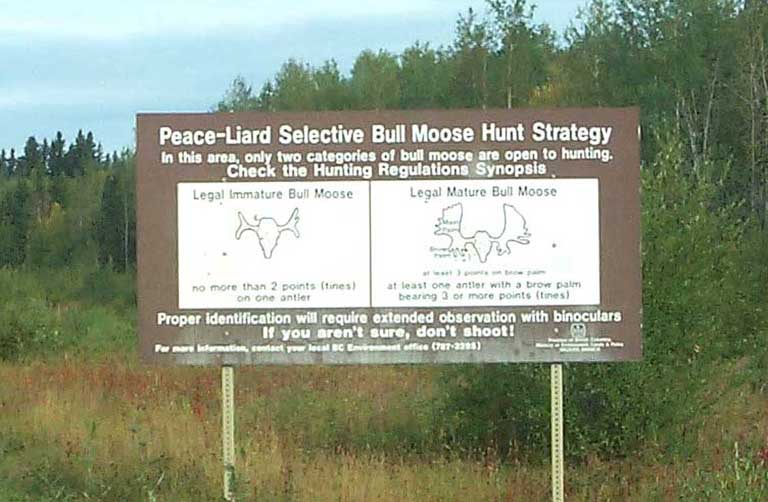 DC 58 - Moose Hunting Warning - 60319